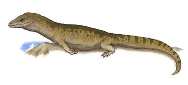 アイギアロサウルス