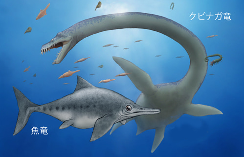 海生爬虫類