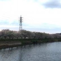 花見川サイクリングロ…