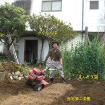 村長の自宅家庭菜園と…
