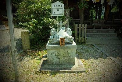 大洲神社(愛媛県/四国)のふくろうさん
