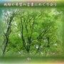 『 新緑や希望の言葉…