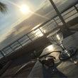 Sunset doe…
