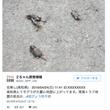 愛知県東部の地震とフ…