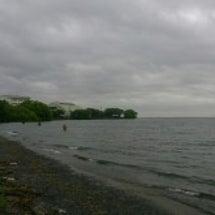 春の琵琶湖バス釣り大…