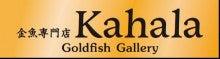 金魚専門店Kahala さま