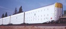 米国各地に建設された強制収容所FEMA