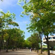 【GELロゴステッカ…
