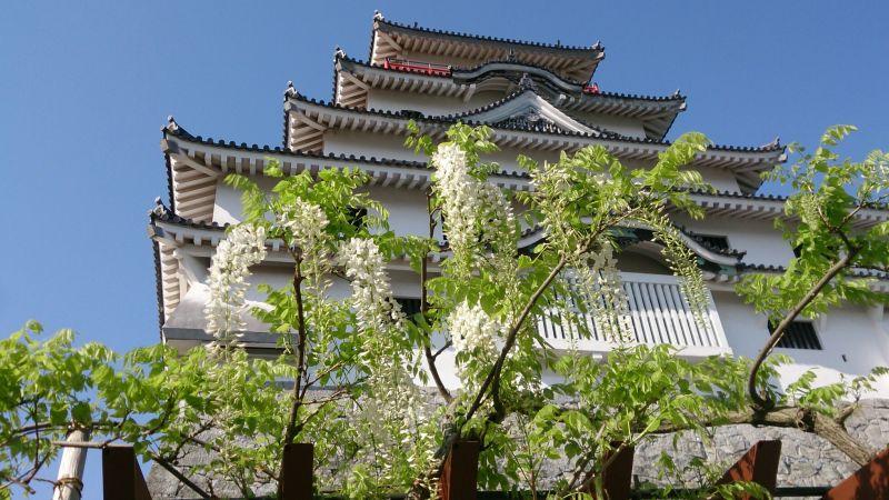 藤と唐津城
