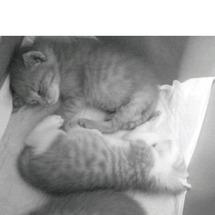 よく寝て、よく食べて…