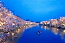 弘前城ライトアップ#4