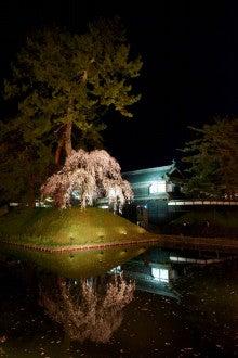 弘前城ライトアップ#16