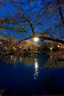 弘前城ライトアップ#7