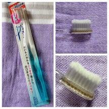 今月の歯ブラシ ピュ…