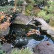 庭池の漏水止工事(F…