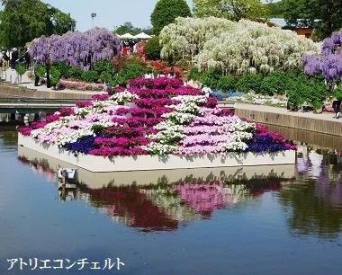 水上の花」