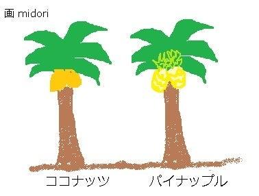 パイナップルの木?想像図
