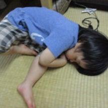 ふ~ちゃんの寝姿