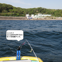 5月8日 観音崎へア…