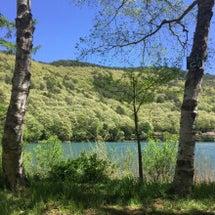 湖畔キャンプ