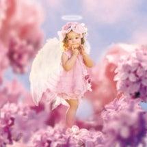天使が宿る(?)Fu…
