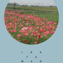 収穫祭とお茶Time…