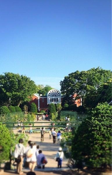 港の見える丘公園薔園