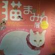 猫まみれ展と津観音