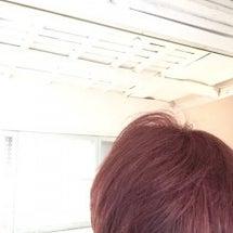 赤毛(^^♪