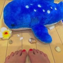 ♛夏よ!!こーい!♛…