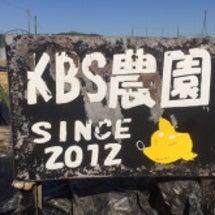 KBS農園