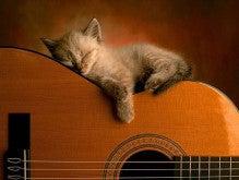 wallpaper-guitar-photo-12.jpg