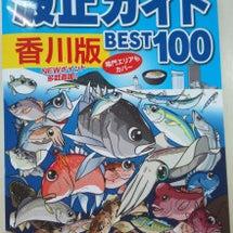 香川県の釣りなら