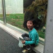 動物公園。