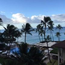 Hawaii PP