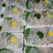 活きの魚政 本日のお…