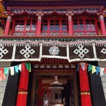 チベット行ってきます…