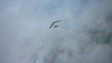 ハンググライダーの魅力を伝えたい雲
