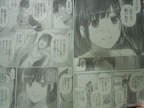 ドメスティックな彼女 第95話 ~ 嘘 ~|ニッチ de リッチ(笑)