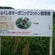 〜広野町のCotto…