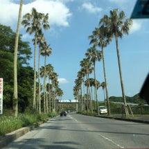 週末トリップ!館山へ…