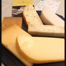 5月のチーズ会報告