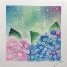 私の今年の「紫陽花」