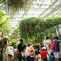 上野動物園に行った~…