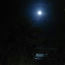 本日の満月に試してほ…