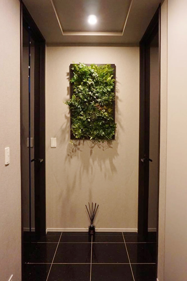 新居に飾るグリーン