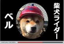 柴犬ライダーベルの動画