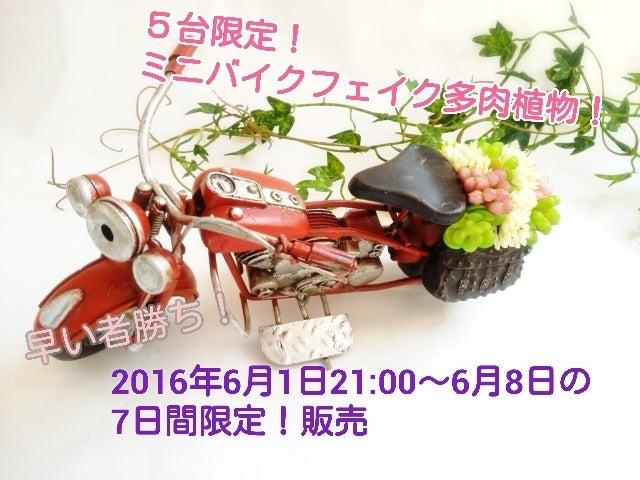 16-05-24-13-18-09-836_deco.jpg