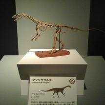 恐竜博とオートクチュ…