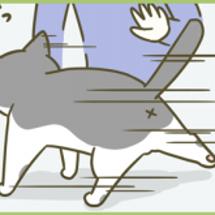 猫盗撮(+web掲載…